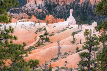 Bryce Canyon Nationalpark Utah