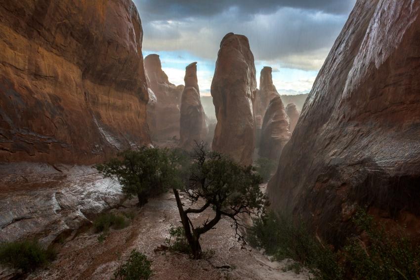 Arches Nationalpark Utah
