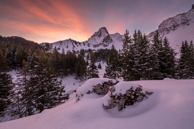 Wundervoller Morgen am Gantrischsee im Berner Oberland.