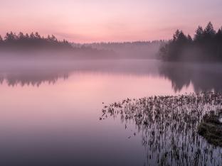 Am Morgen hier ganz alleine zu stehen ist wundervoll!