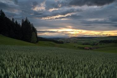 Das Wetter passt! Die Sonne kommt am Abend hinter den Wolken zum Vorschein.