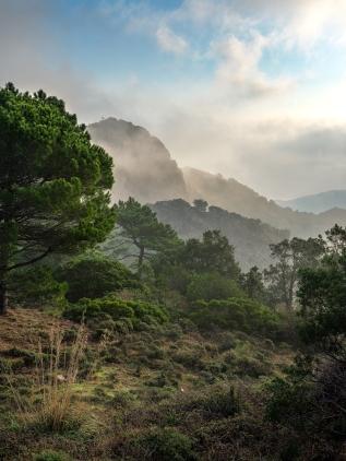 Monte Castillo (IT)